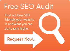 free-seo-audit-button-01